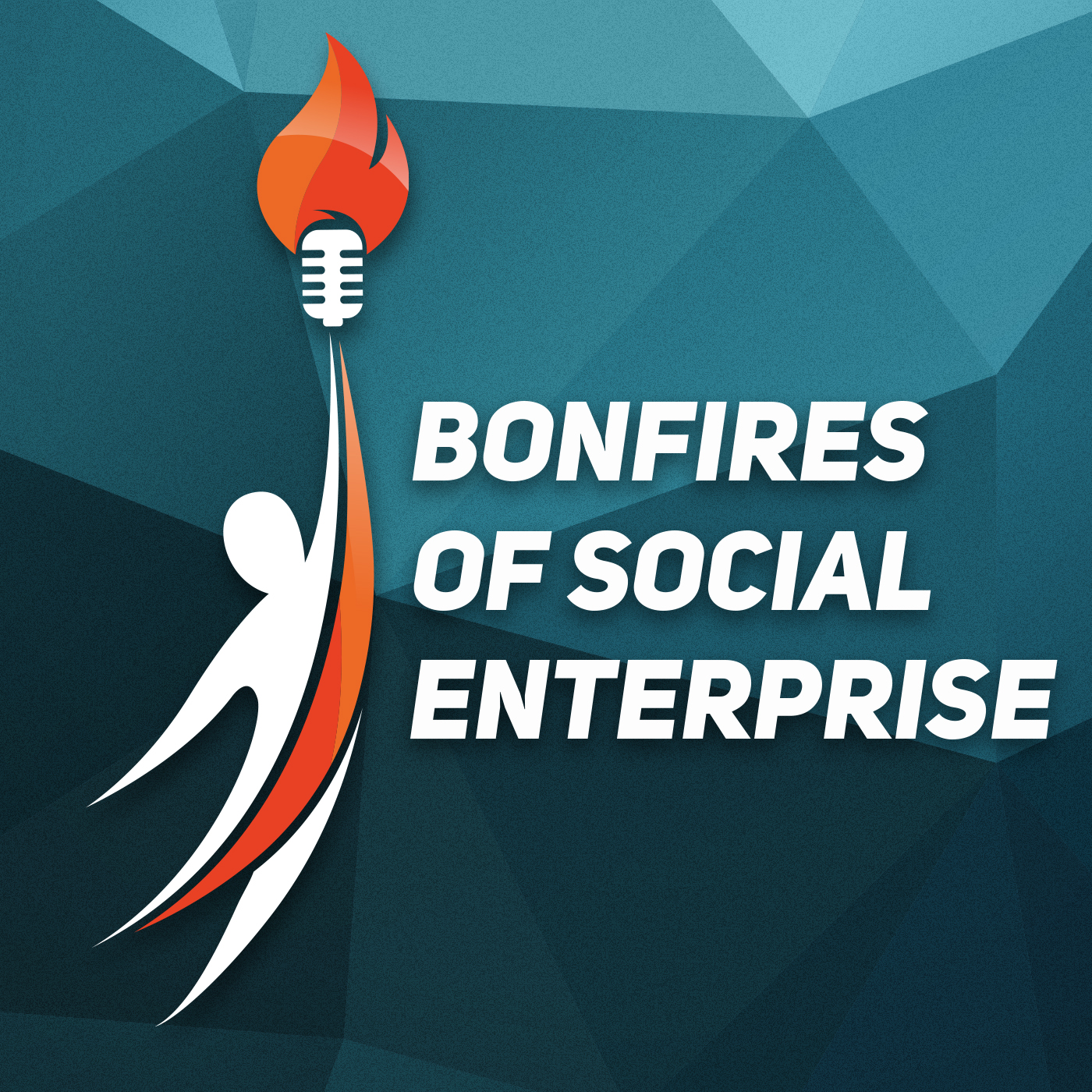 bonfires of social enterprise cover